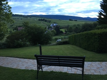 Hotel with a view of vineyards in Alsace