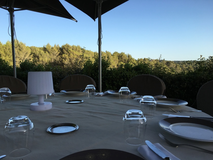 Provençal countryside dinner with a view