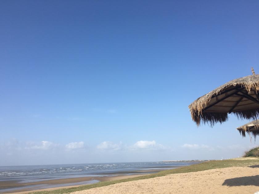 Mandvi Beach beside Serena Beach Resort